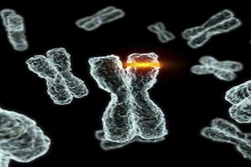 遗传性健康风险评估